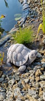 Gartenfigur Schildkröte Beany